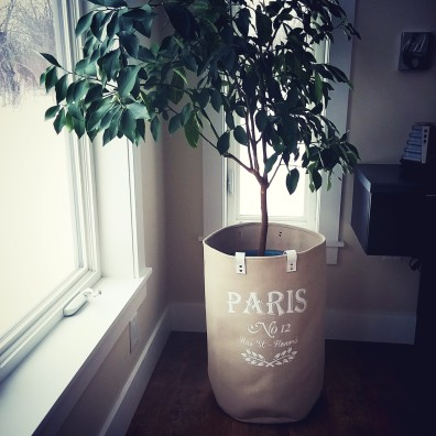 plant in paris laundry bag deborah nicholson lighitng and interiors