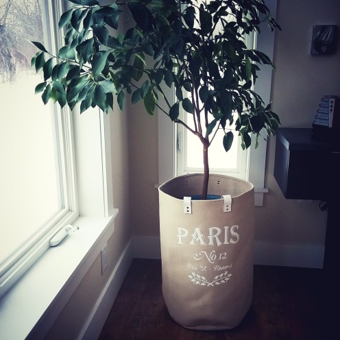 plant in paris laundry bag deborah nicholson lighitng and interiors