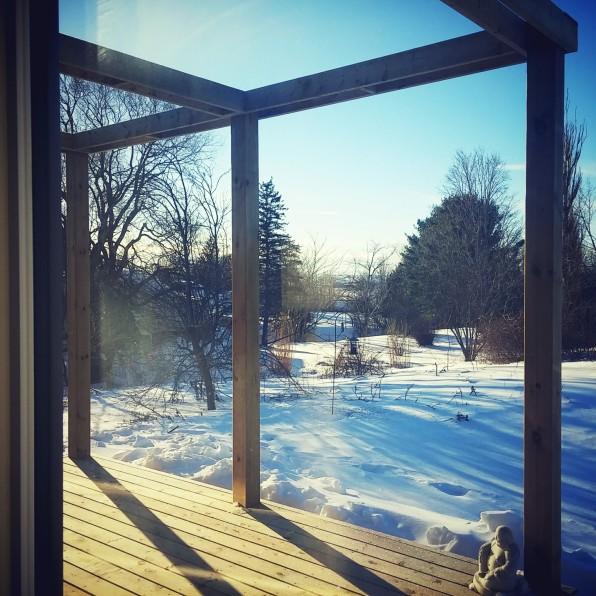 front garden in winter by deborah nicholson